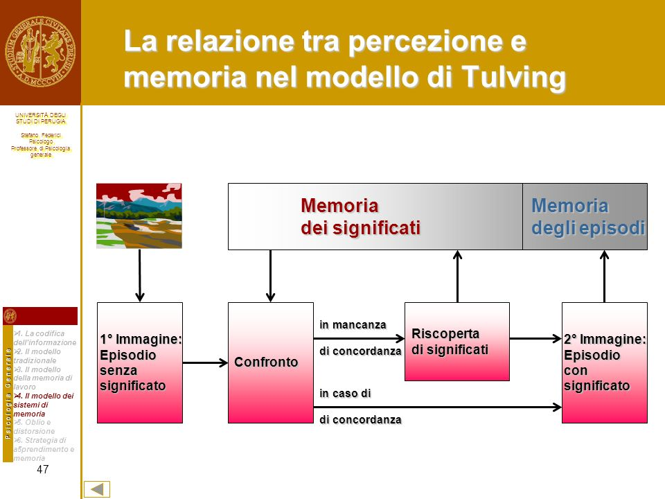 La relazione tra percezione e memoria nel modello di Tulving