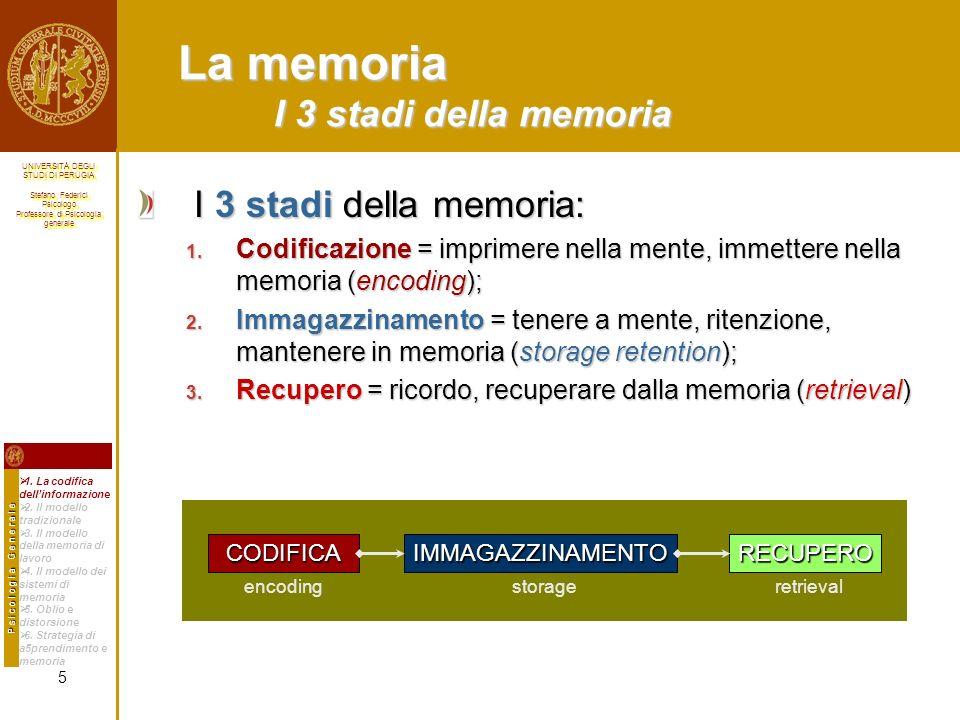 La memoria I 3 stadi della memoria