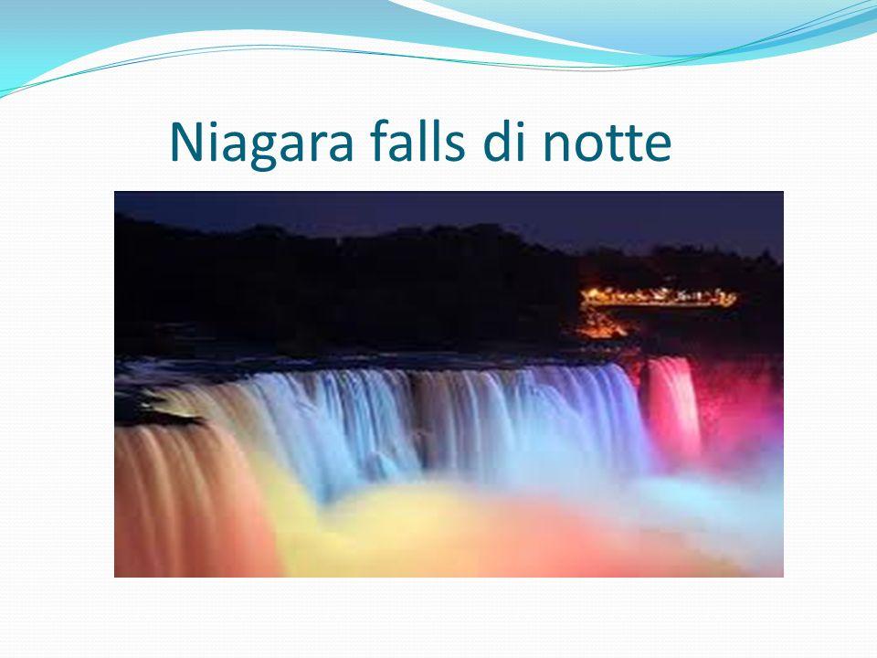 Niagara falls di notte