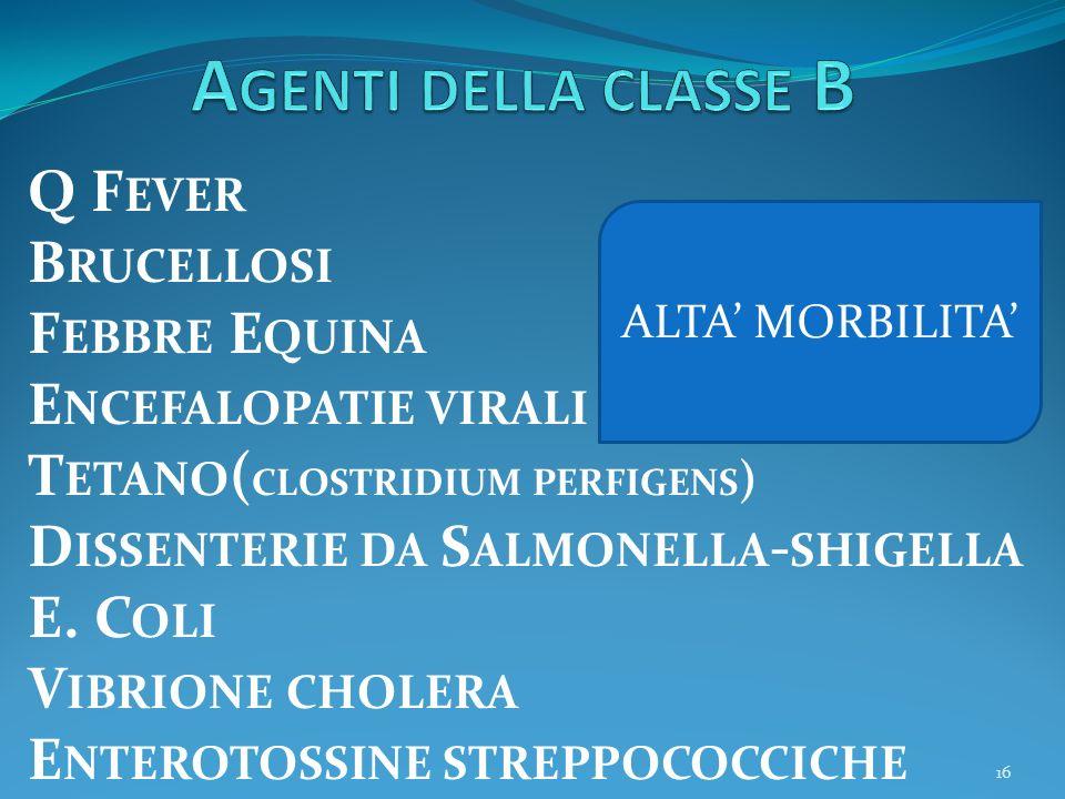 Agenti della classe B Q Fever Brucellosi Febbre Equina