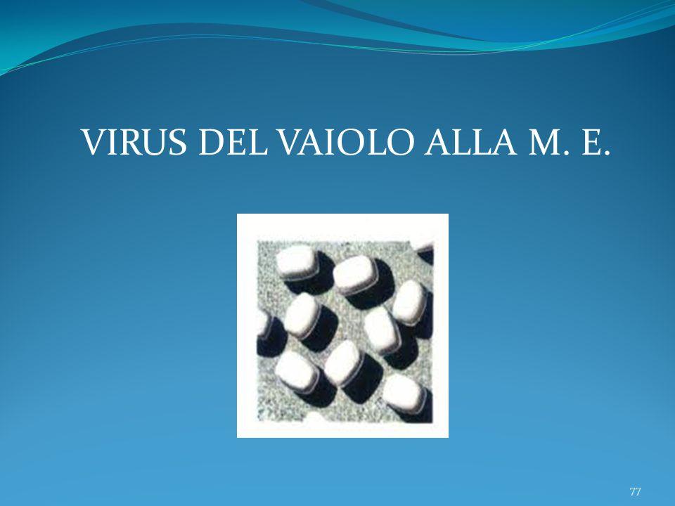 VIRUS DEL VAIOLO ALLA M. E.