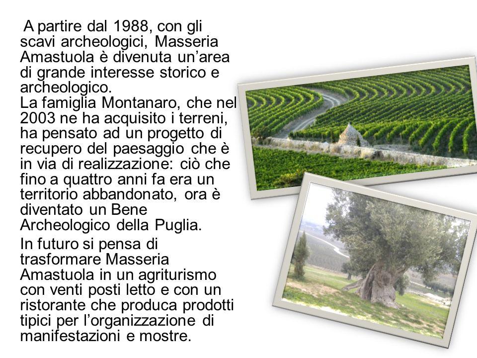 A partire dal 1988, con gli scavi archeologici, Masseria Amastuola è divenuta un'area di grande interesse storico e archeologico. La famiglia Montanaro, che nel 2003 ne ha acquisito i terreni, ha pensato ad un progetto di recupero del paesaggio che è in via di realizzazione: ciò che fino a quattro anni fa era un territorio abbandonato, ora è diventato un Bene Archeologico della Puglia.