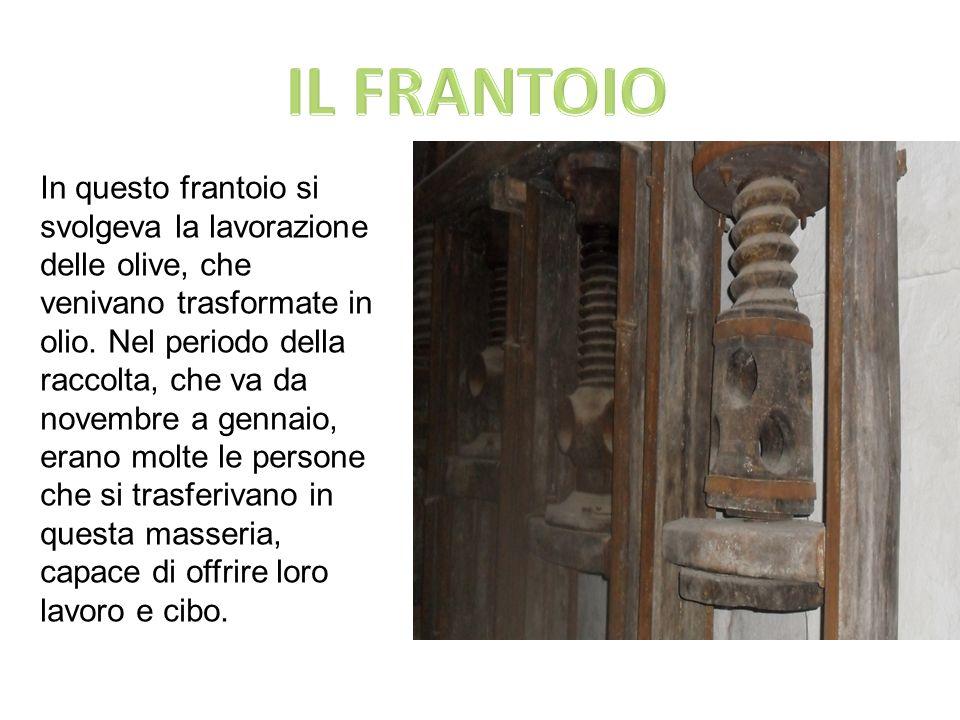 IL FRANTOIO