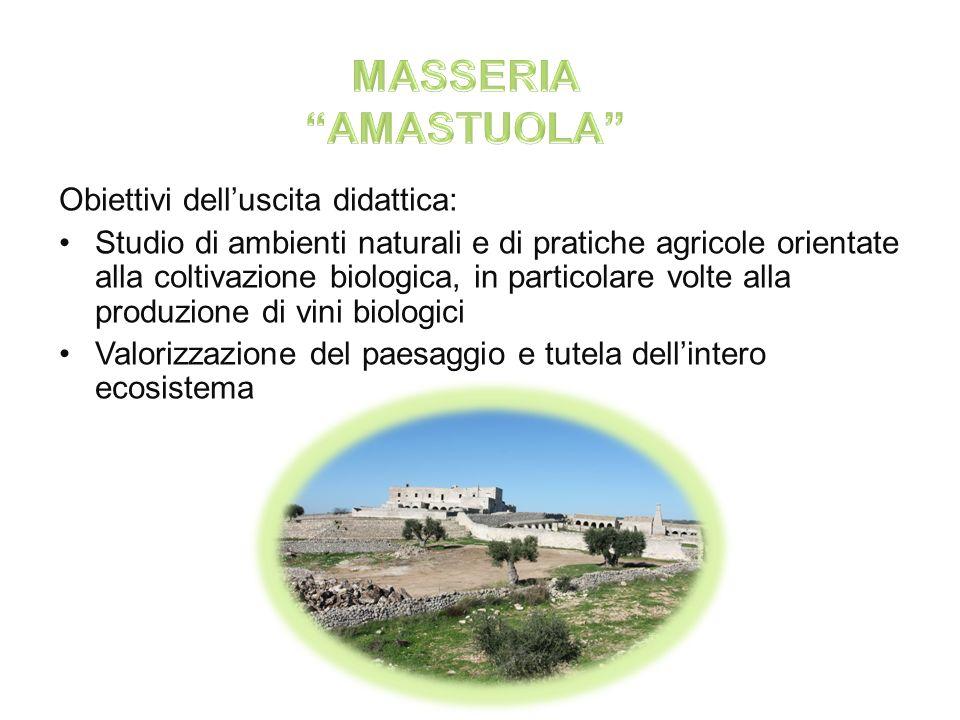 MASSERIA AMASTUOLA Obiettivi dell'uscita didattica: