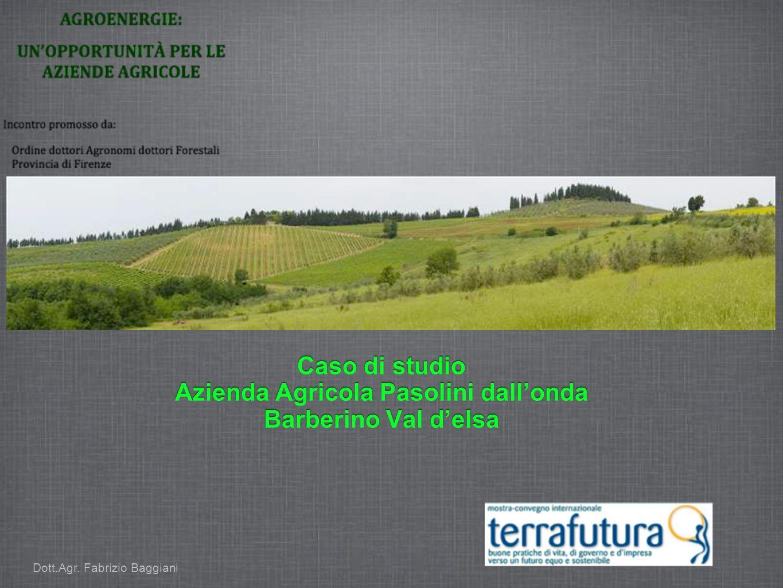 Dott.Agr. Fabrizio Baggiani
