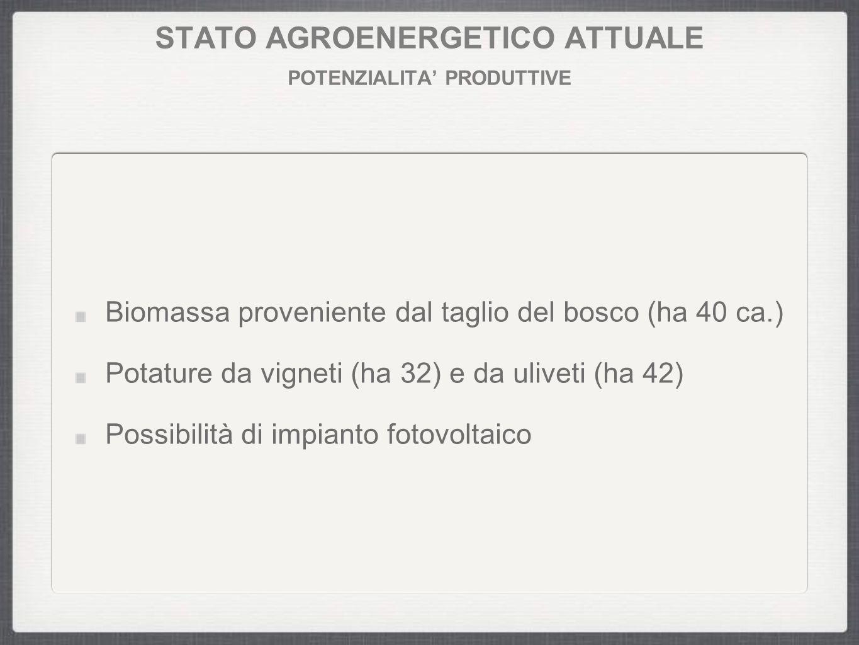 STATO AGROENERGETICO ATTUALE POTENZIALITA' PRODUTTIVE