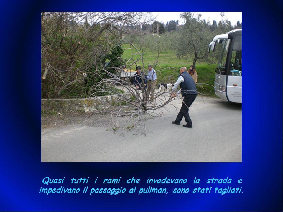 Quasi tutti i rami che invadevano la strada e impedivano il passaggio al pullman, sono stati tagliati.
