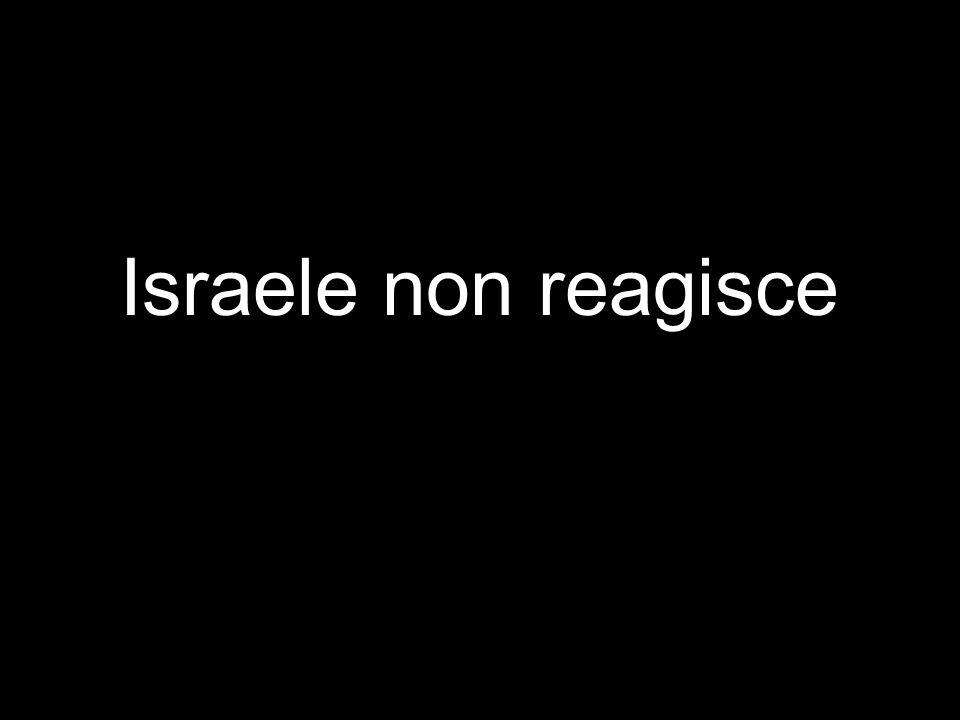 Israele non reagisce