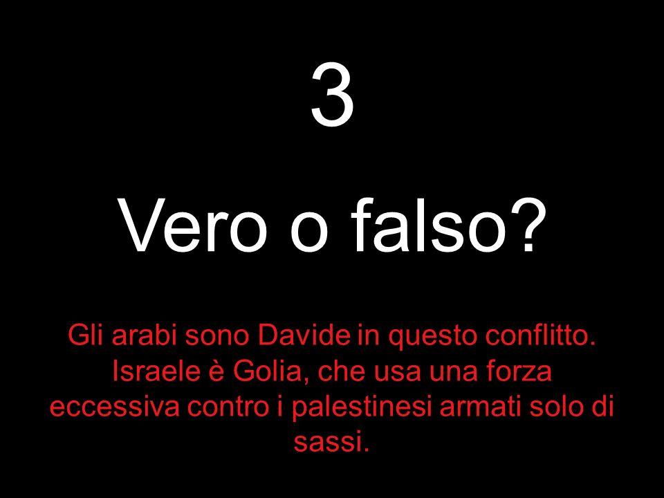 3 Vero o falso. Gli arabi sono Davide in questo conflitto.