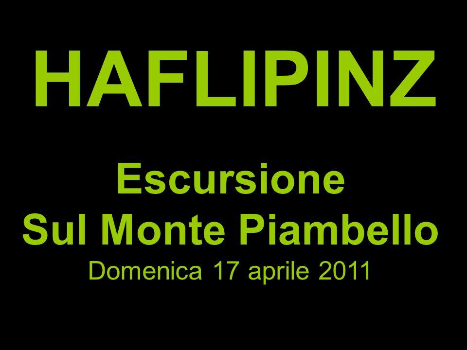 HAFLIPINZ Escursione Sul Monte Piambello Domenica 17 aprile 2011
