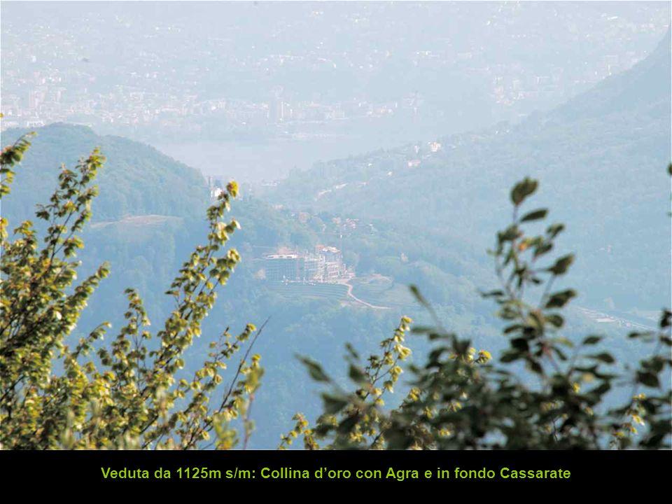 Veduta da 1125m s/m: Collina d'oro con Agra e in fondo Cassarate