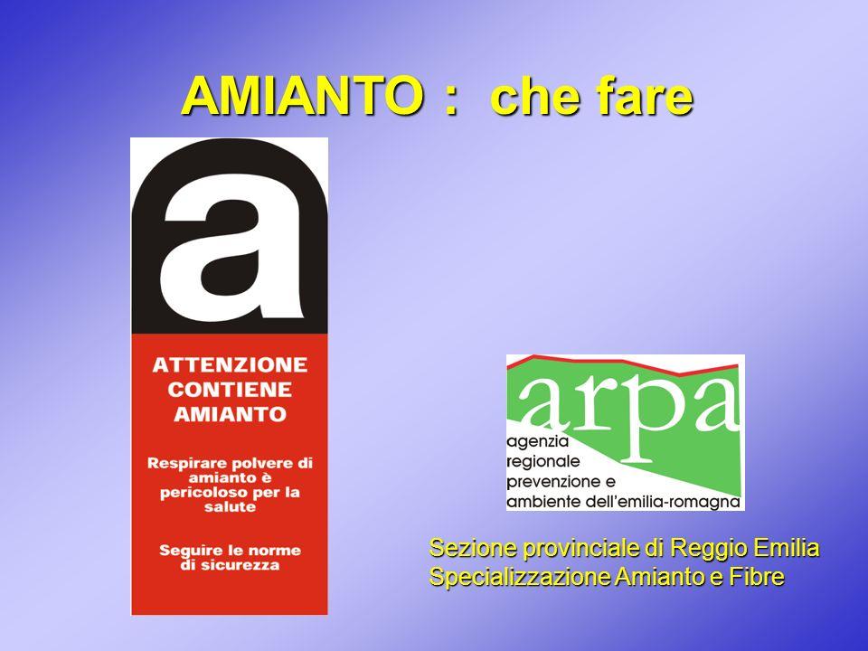 AMIANTO : che fare Sezione provinciale di Reggio Emilia Specializzazione Amianto e Fibre