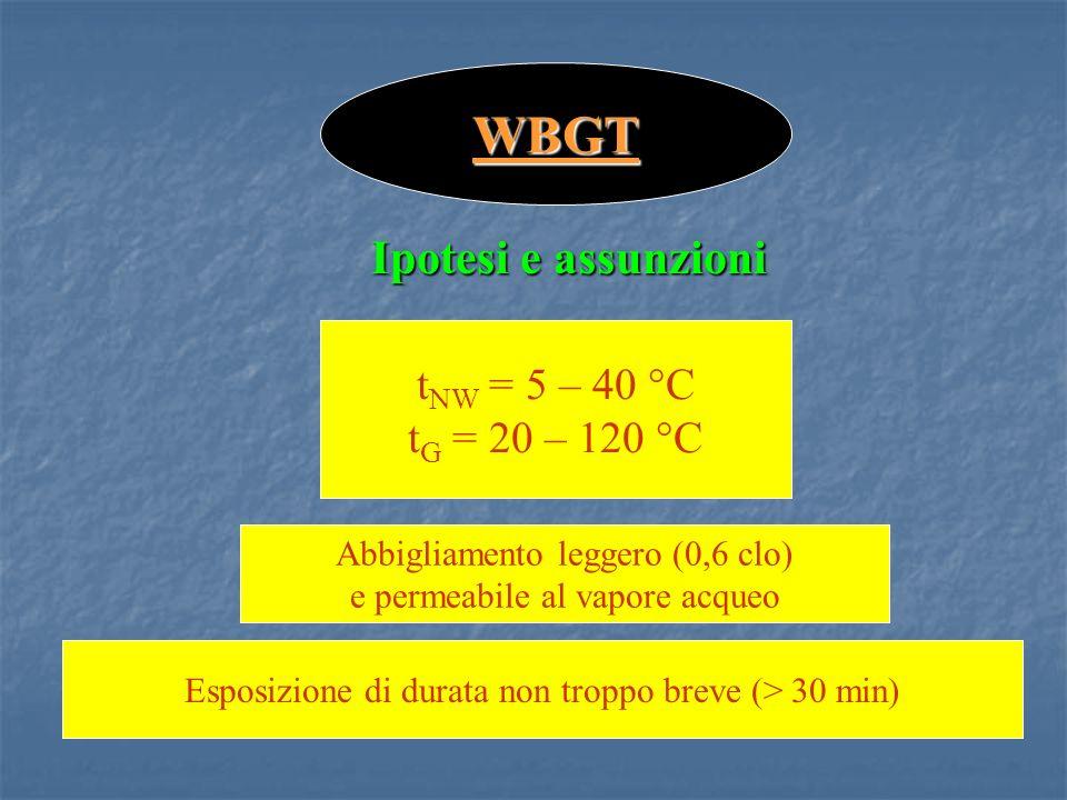 WBGT Ipotesi e assunzioni tNW = 5 – 40 °C tG = 20 – 120 °C