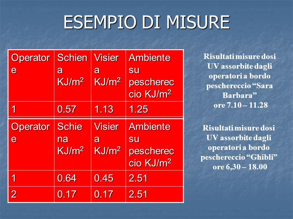 ESEMPIO DI MISURE Operatore Schiena KJ/m2 Visiera KJ/m2