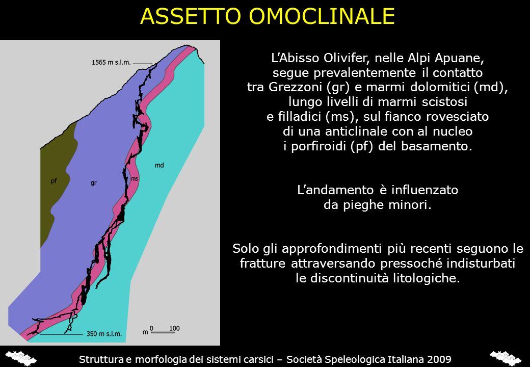 ASSETTO A PIEGHE L'Abisso Gofredo (Alpi Apuane) attraversa una struttura complessa, lungo una serie di fratture, risentendo della struttura.