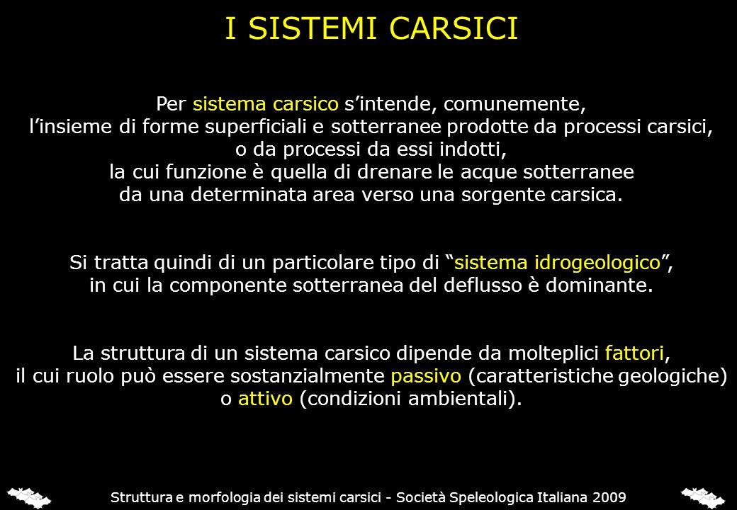 CARATTERISTICHE LITOLOGICHE
