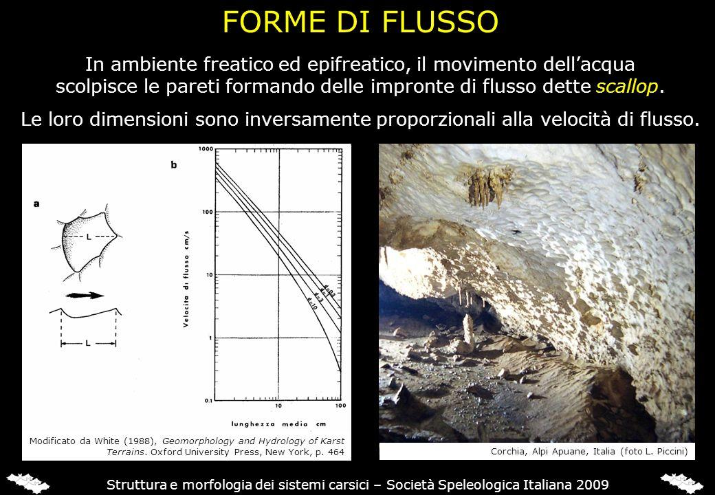 FORME DI FLUSSO A PIENO CARICO
