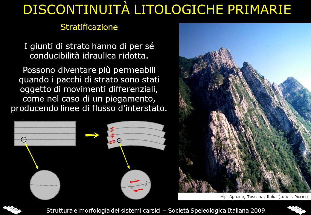 DISCONTINUITÀ LITOLOGICHE PRIMARIE
