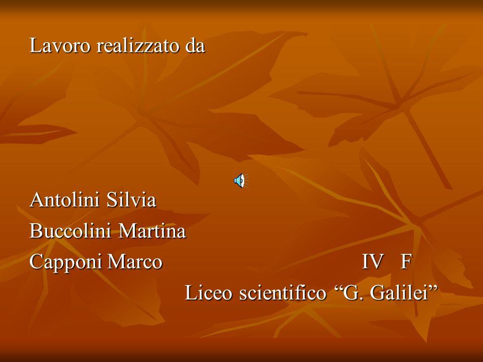 Lavoro realizzato da Antolini Silvia. Buccolini Martina. Capponi Marco IV F.