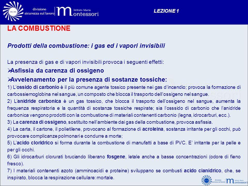 LEZIONE 1 LA COMBUSTIONE. Prodotti della combustione: i gas ed i vapori invisibili.