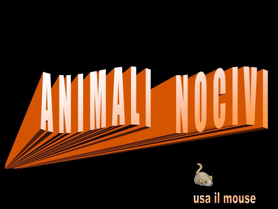ANIMALI NOCIVI usa il mouse