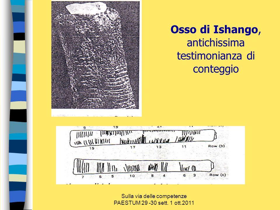 Osso di Ishango, antichissima testimonianza di conteggio