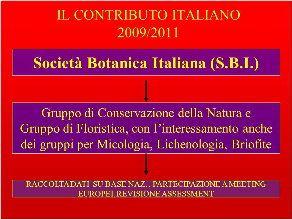 IL CONTRIBUTO ITALIANO 2009/2011