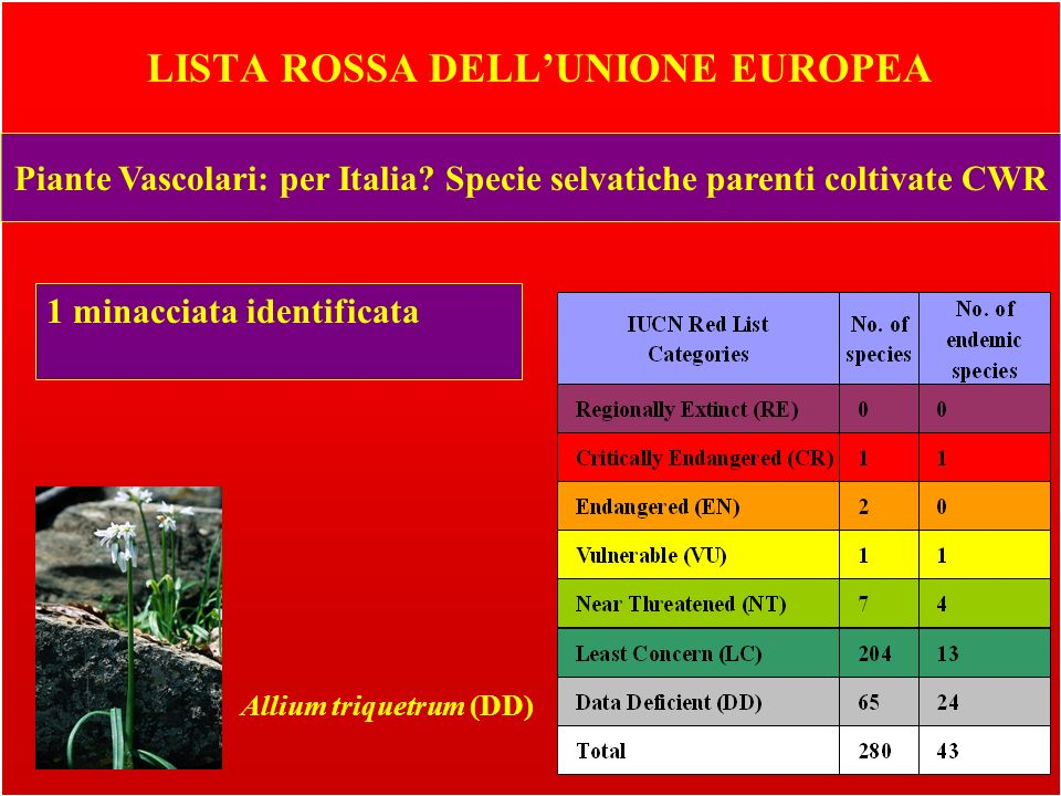 LISTA ROSSA DELL'UNIONE EUROPEA