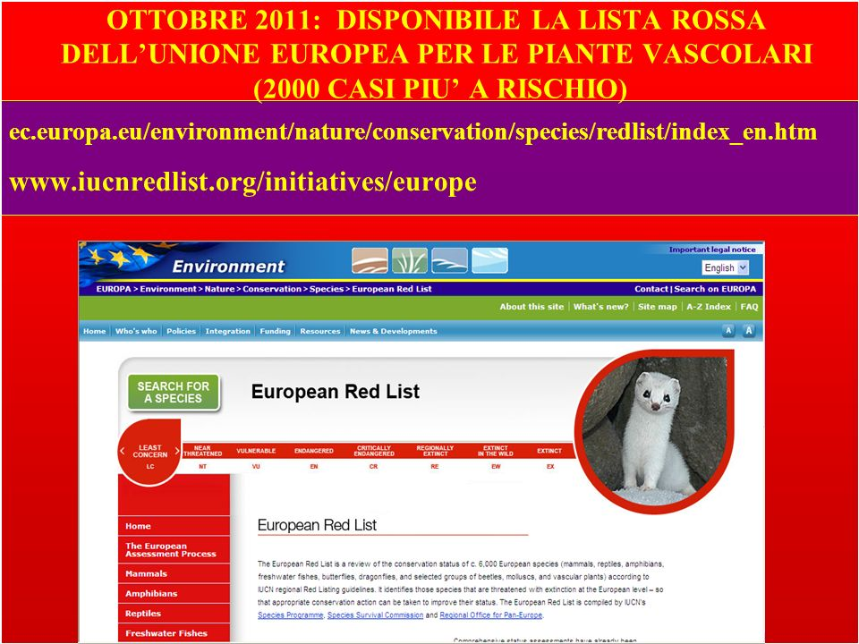 OTTOBRE 2011: DISPONIBILE LA LISTA ROSSA DELL'UNIONE EUROPEA PER LE PIANTE VASCOLARI (2000 CASI PIU' A RISCHIO)