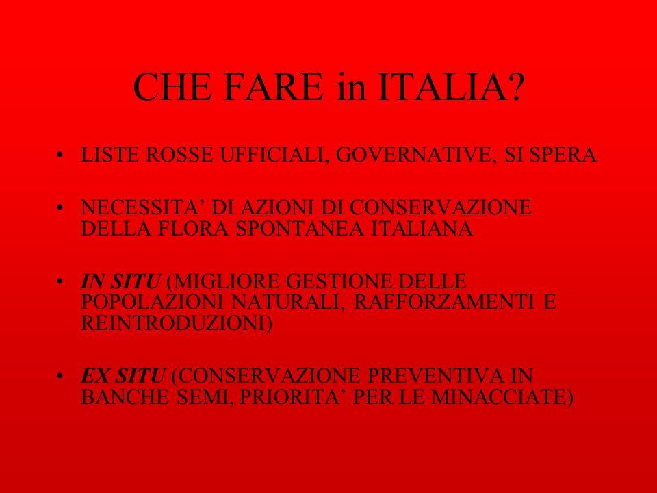 CHE FARE in ITALIA LISTE ROSSE UFFICIALI, GOVERNATIVE, SI SPERA
