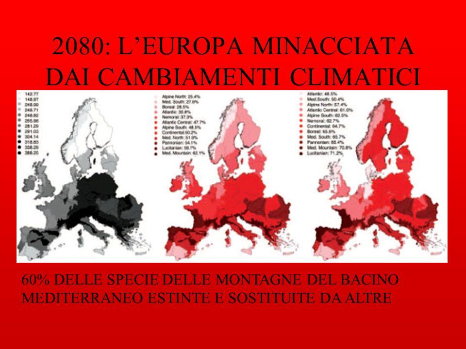2080: L'EUROPA MINACCIATA DAI CAMBIAMENTI CLIMATICI
