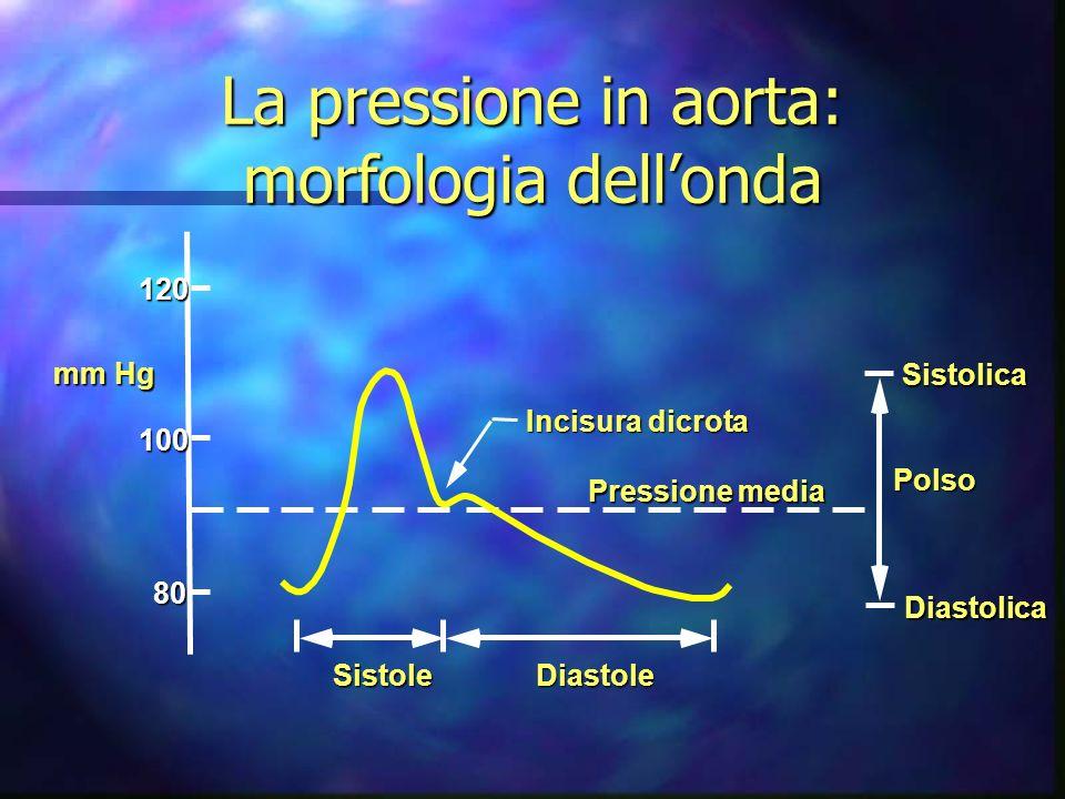 La pressione in aorta: morfologia dell'onda