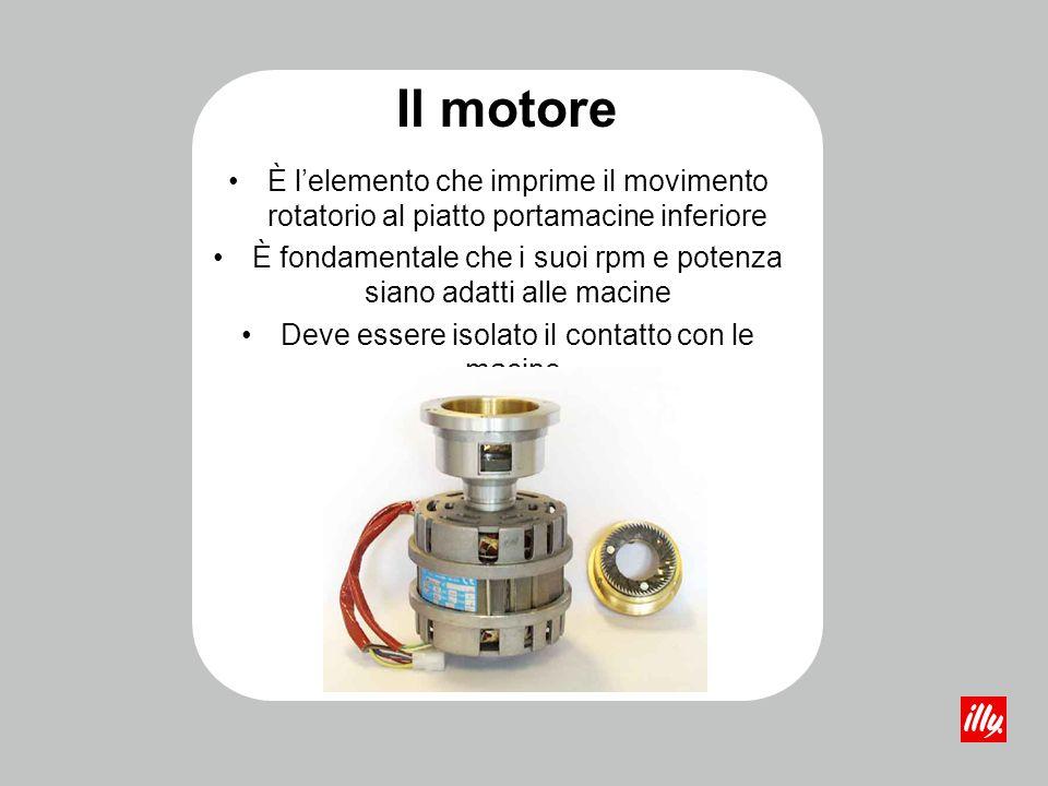 Il motore È l'elemento che imprime il movimento rotatorio al piatto portamacine inferiore.