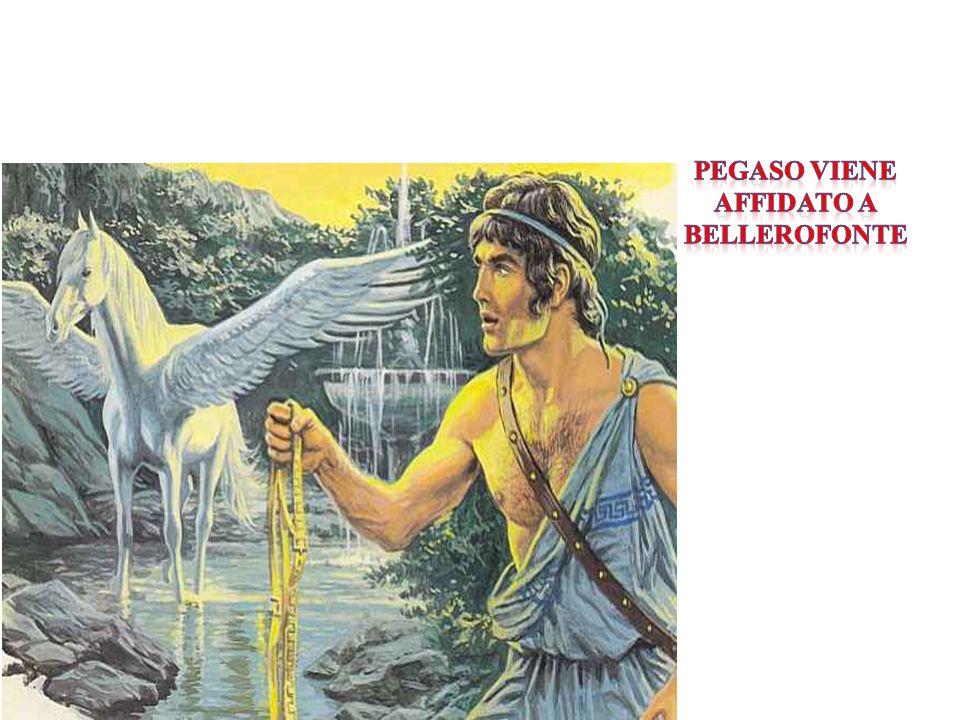 Pegaso viene affidato a Bellerofonte