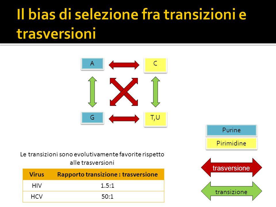 Il bias di selezione fra transizioni e trasversioni