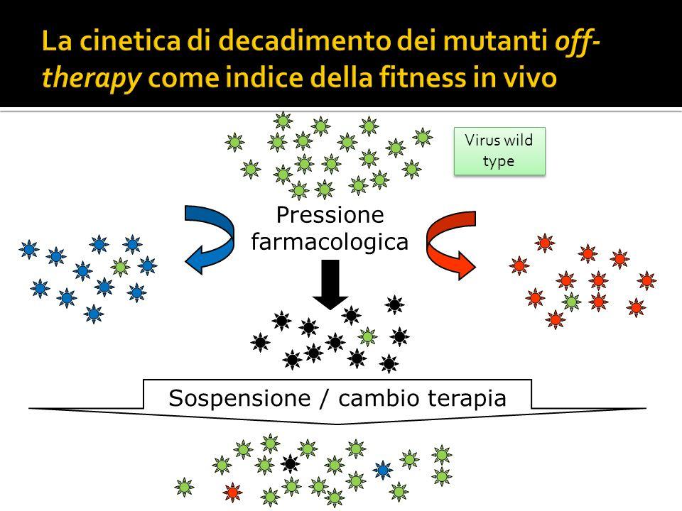 La cinetica di decadimento dei mutanti off-therapy come indice della fitness in vivo