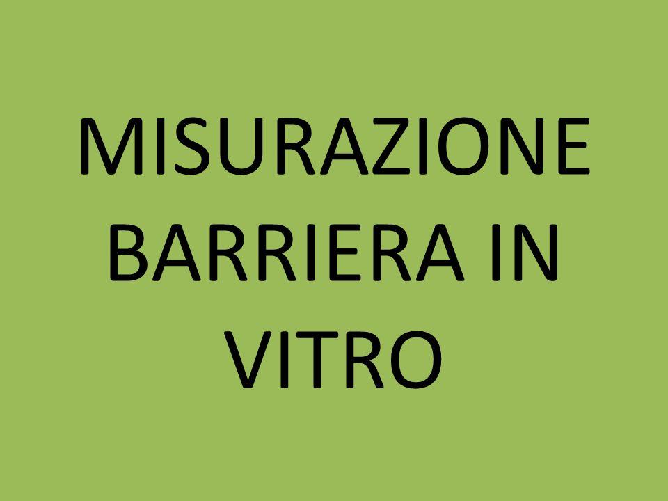 MISURAZIONE BARRIERA IN VITRO