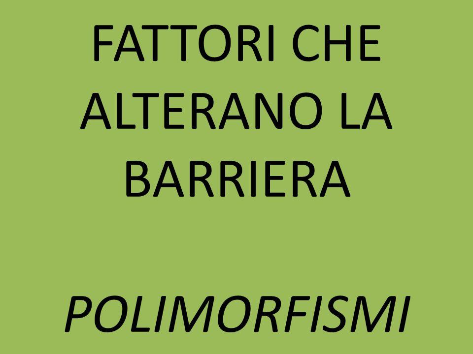 FATTORI CHE ALTERANO LA BARRIERA POLIMORFISMI