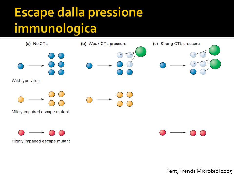 Escape dalla pressione immunologica