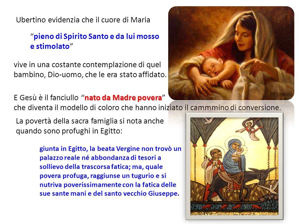 Ubertino evidenzia che il cuore di Maria