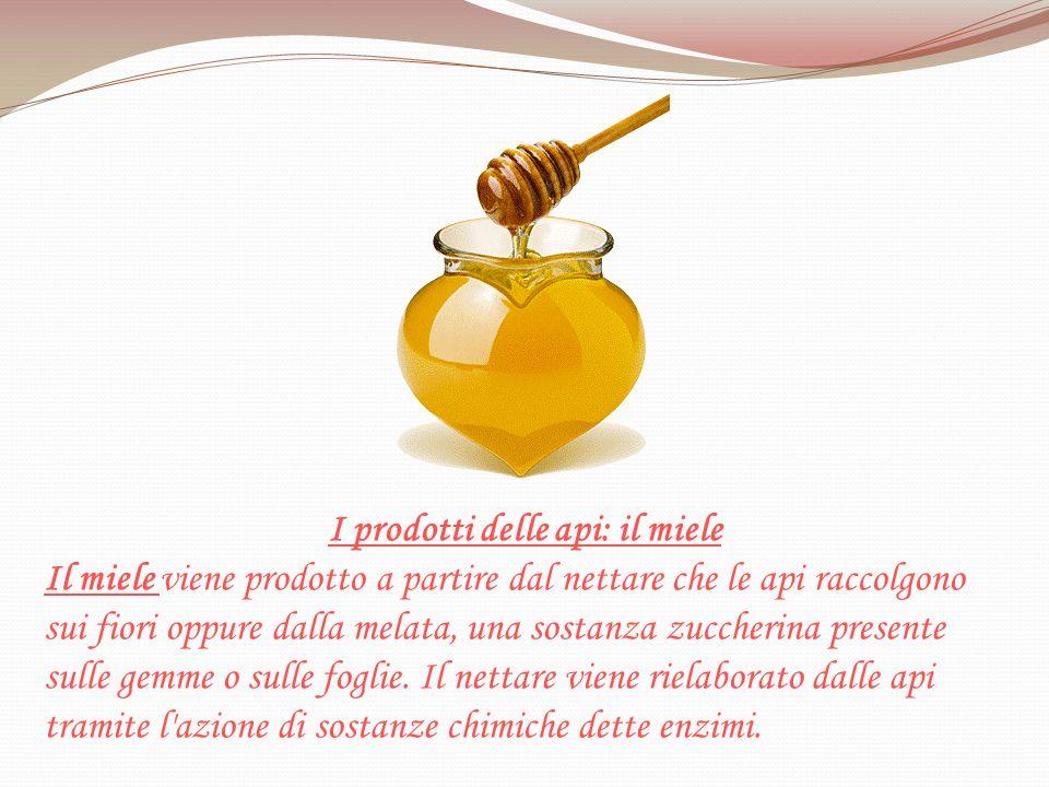 I prodotti delle api: il miele
