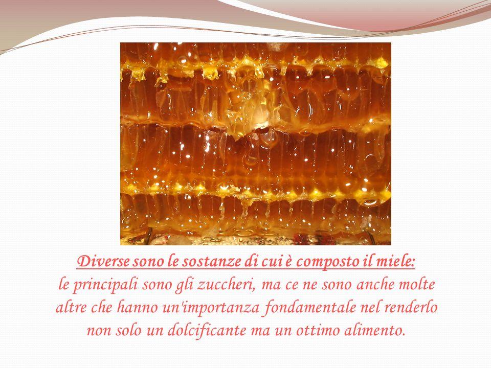 Diverse sono le sostanze di cui è composto il miele: le principali sono gli zuccheri, ma ce ne sono anche molte altre che hanno un importanza fondamentale nel renderlo non solo un dolcificante ma un ottimo alimento.
