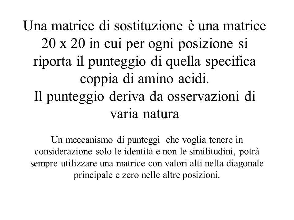 Una matrice di sostituzione è una matrice 20 x 20 in cui per ogni posizione si riporta il punteggio di quella specifica coppia di amino acidi. Il punteggio deriva da osservazioni di varia natura