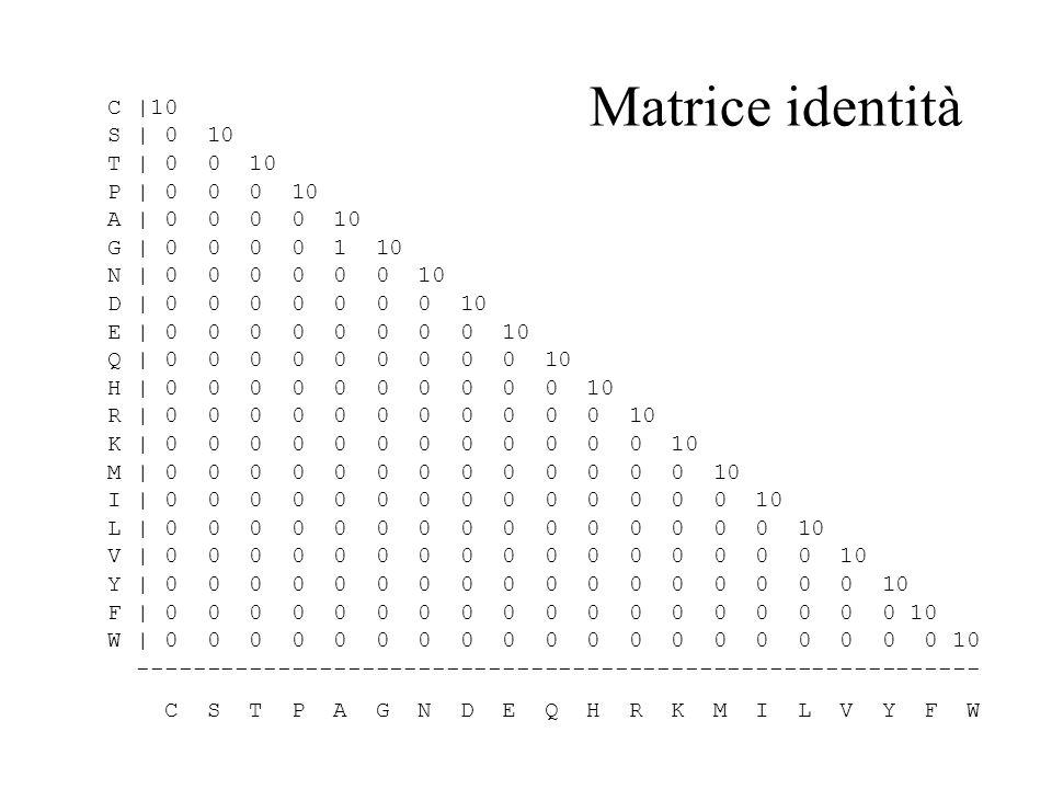 Matrice identità C |10 S | 0 10 T | 0 0 10 P | 0 0 0 10 A | 0 0 0 0 10