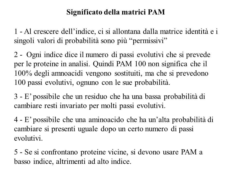 Significato della matrici PAM
