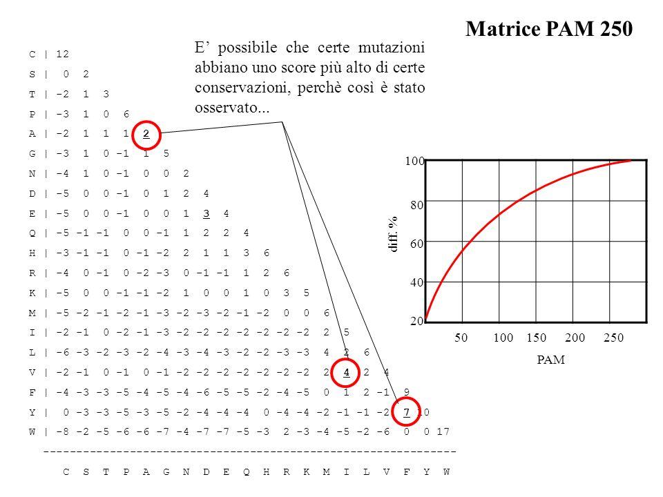 Matrice PAM 250 E' possibile che certe mutazioni abbiano uno score più alto di certe conservazioni, perchè così è stato osservato...
