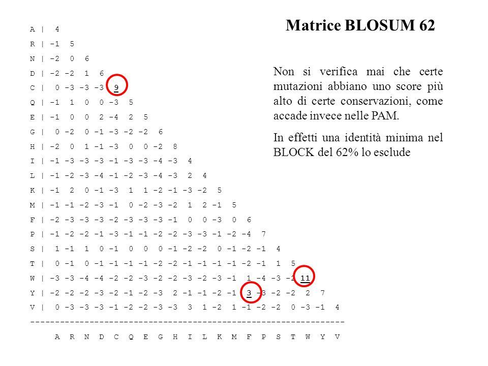 Matrice BLOSUM 62 A | 4. R | -1 5. N | -2 0 6. D | -2 -2 1 6. C | 0 -3 -3 -3 9. Q | -1 1 0 0 -3 5.