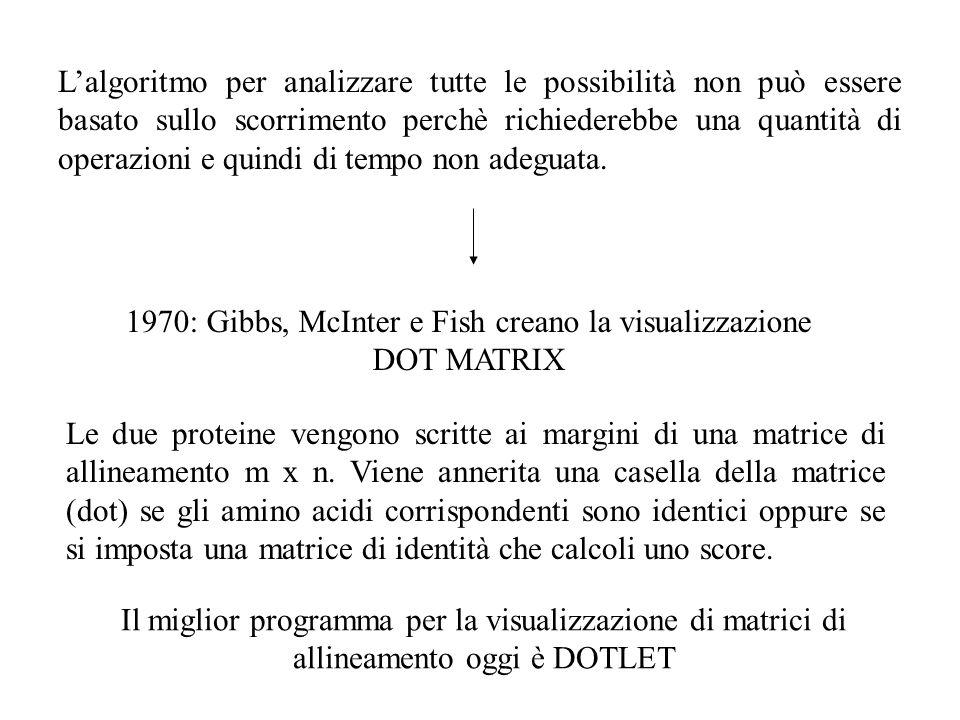 1970: Gibbs, McInter e Fish creano la visualizzazione DOT MATRIX