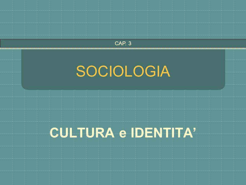 CAP. 3 SOCIOLOGIA CULTURA e IDENTITA'