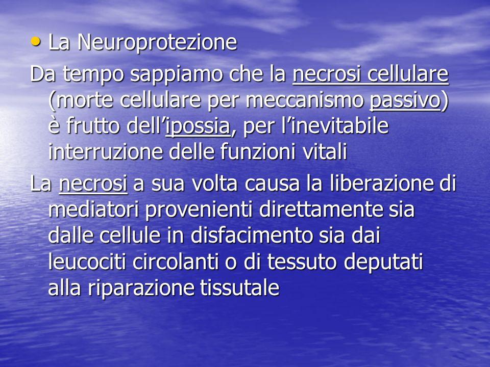 La Neuroprotezione